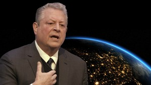 Al Gore: why sustainable investing makes financial sense